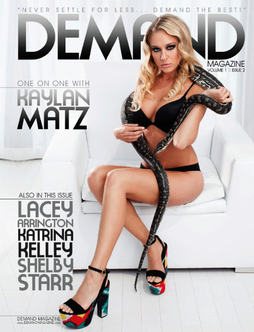 1378898667_demand-magazine-issue-2.0-2013-1