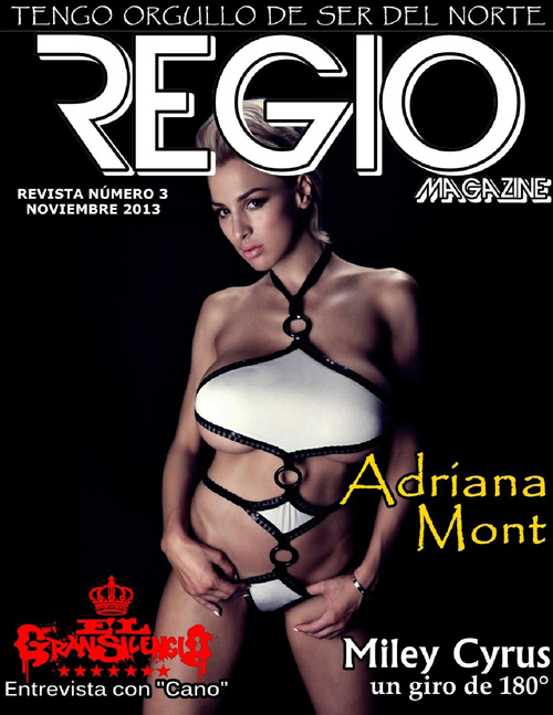 1387841371_regio-magazine-november-2013-1