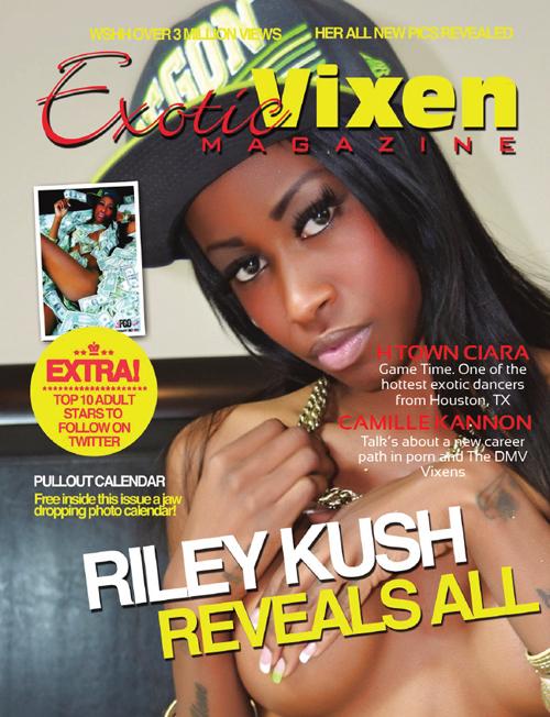 1388865170_exotic-vixen-magazine-january-2012-1