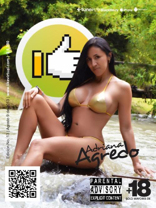 1390018107_revista-like-13-1