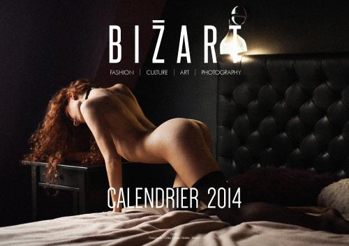1390657462_calendrier-2014-bizart-magazine-1