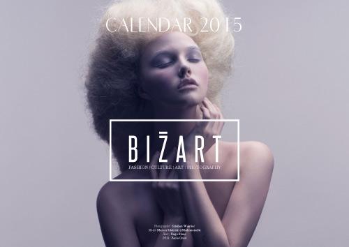 1417989190_bizart-calendar-2015-1